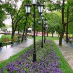 Места для прогулок в Воронеже